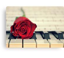 Red Rose on a Piano Canvas Print