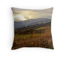 Peace with nature  Throw Pillow