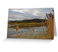 Lakeside Beauty  Greeting Card