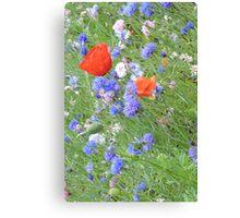 Wildflower Flurry Canvas Print