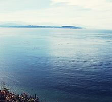Admiralty Inlet by elixandre