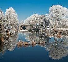 Reflections of Winter by David Dean
