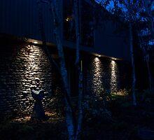 Feeling Blue by Eric Scott Birdwhistell