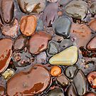 Rocks of Lake Superior 1 by Jimmy Ostgard