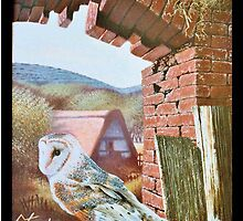 Downland Barn Owls by Stephen Lewis Gilmore