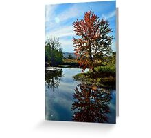 Autumn Reflecting  Greeting Card