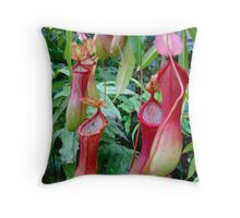 Nepenthes - Carnivorous Tropical Pitcher Plants Throw Pillow