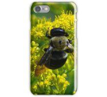 Mr. Bumble iPhone Case/Skin