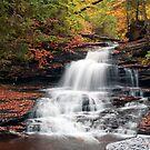 Feels Like Fall At Onondaga Falls by Gene Walls