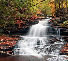 Feels Like Fall At Onondaga Falls by Gene Walls