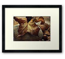 Autumn - a still life study Framed Print