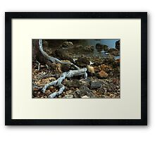 Moving through adversity Framed Print