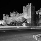 Cahir Castle at Night by Martina Fagan