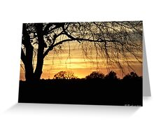 Twilight Shadows - Tree silhouette in golden sunset Greeting Card