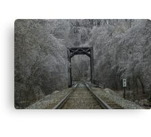 Ice Storm 2 Canvas Print