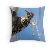 Ladder-backed Woodpecker ~ Male Throw Pillow