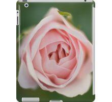 Drawn in - pink rose iPad Case/Skin