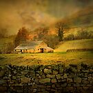 The Barn.! by Irene  Burdell