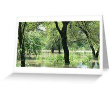 Flooded wilderness_pehla Greeting Card
