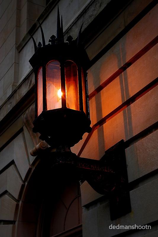 late afternoon sunlit lamp by dedmanshootn
