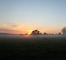 Sunrise of Oxley #3 by Jodie Cooper
