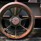 Logging Wheel, Taranna, Tasmania. by Philip Hallam