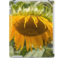 Last Breath of the Sunflower iPad Case/Skin