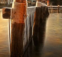 Twas the night before Xmas - Little Manly Cove by Step9