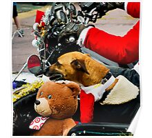 Sidecar pooch and friend Poster