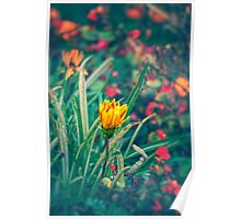Yellow Flower Poster