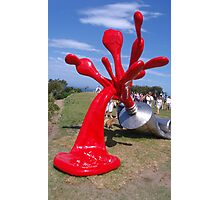 Sculpture by the Sea Exhibition 2 Photographic Print