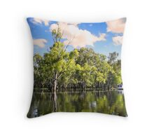 Murray River in flood Throw Pillow