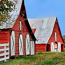 Red Barns by RickDavis