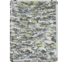 North Cascades Granite iPad Case/Skin
