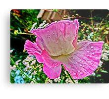 Drippy Pink Poppy Metal Print