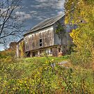 This Old Barn by Sharon Batdorf