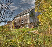 This Old Barn by Sharon Batdorf