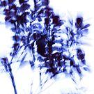 impressionist leaves series 1 by Iris Lehnhardt