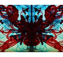Spider Womb Photographic Print