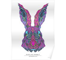The Mindfulness Series: The Rippling Rabbit Poster