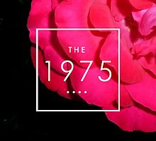 the 1975 rose theme by Theorgasmic1975