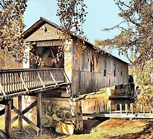 Kymulga Covered Bridge by RickDavis