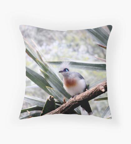Pretty Bird2 Throw Pillow