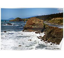 Otter Point View Poster