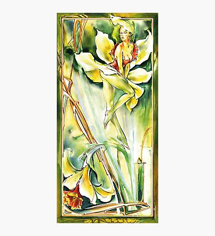 Narcissus Photographic Print