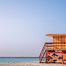 Beach Life - Miami by fernblacker
