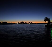 Floridian Sunset by Alison Ward