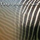 Fingerprints of God by Arie van der Wijst