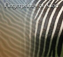 Fingerprints of God by Arie van der Wijst