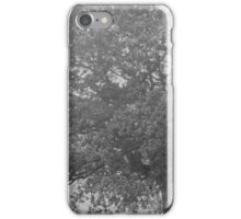 The Misty Tree iPhone Case/Skin